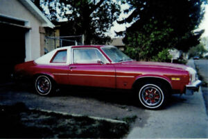1974 Oldsmobile Other Chrome Package Coupe (2 door)