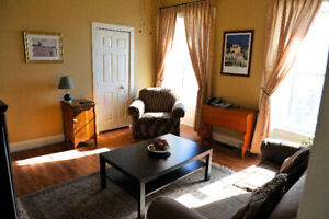 2 Furnished apartment long or short term rental