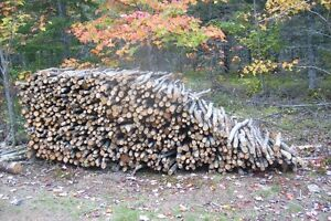 SMALL DRY FIREWOOD