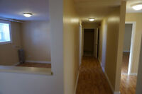 Clean, Central, Renovated with HUGE Bedrooms!