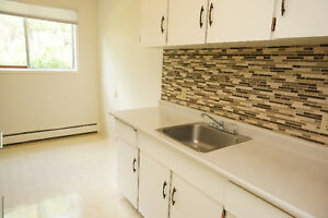 NEW RENTAL INCENTIVES: Large Reno'd 1 Bedroom Apt Near NAIT
