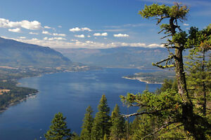 SHUSWAP LAKE TIMESHARE FOR SALE