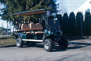 NEW AGT Rambler 6 Seater Electric Cart - RSC Custom Golf Carts