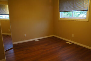 Utilities,Cable,Laundry,Internet...Room in Millwoods Duplex