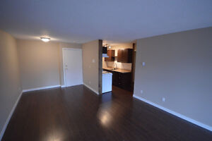 Completely renovated Kamloops Condo