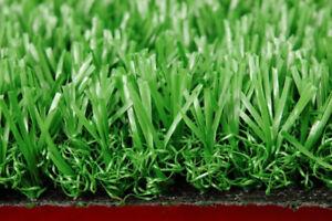 Artificial Turfgrass