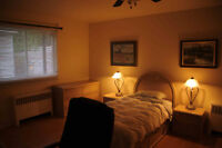 Large room available now or September 1 Vieux Hull $425