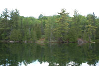 "Haliburton Real Estate Team ""Waterfront Acreage on Sam's Lake"""