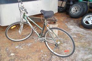 rawleigh ladies large frame bike