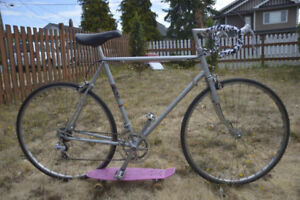 Supercycle 10 speed racing bicycle