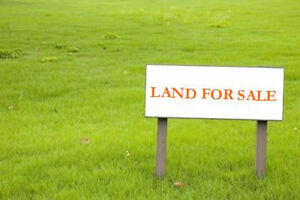 3 Acres of Land for Sale Off Pigeon Lake