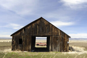 Looking to rent or buy a barn