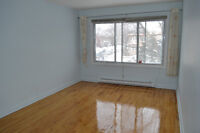 New Renovation 3 1/2 + small room for rent