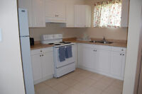 ATTN STUDENTS - Cute 4 bedroom house super close to campus