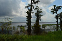 Clermont, Lake County, FL Lakefront