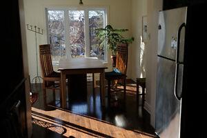Beautiful apt/Bel appartement près du Parc Molson (Rosemont)