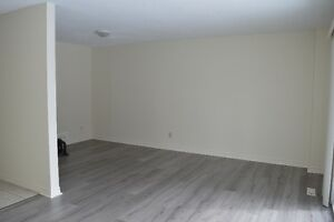 Renovated 3 bedroom Lakeshore townhouse available January or Feb Kitchener / Waterloo Kitchener Area image 3