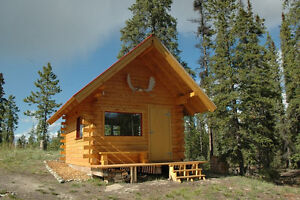 Cozy Log Cabin 25 min south of Whitehorse
