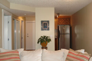 $1,200 / 1br - INNER-CITY (CRESCENT HEIGHTS)