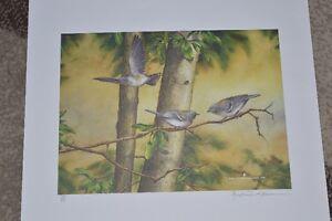 ANDREW WOODHOUSE BIRD PRINTS Cambridge Kitchener Area image 3