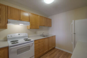 West-End 2bdrm   Secure, Clean & Quiet   All Utilities Included Kingston Kingston Area image 5