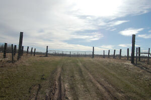 40 acres for sale in Strathcona County