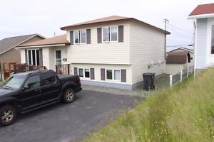 33 Frobisher Ave, Mt Pearl