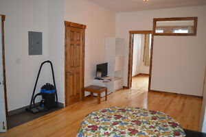 fully renovated 31/2 apartment for rent