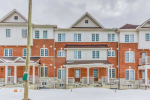 Brand New Town  Available for Lease/ Rent in Ajax