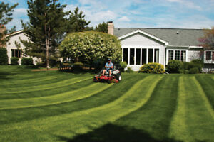 Welland/Fonthill Lawncare