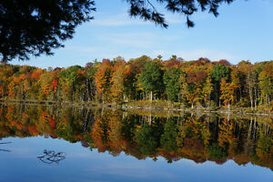 Opportunity to Own 85 Acres Waterfront Farm in Kawartha Lake