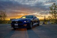 2015 Mustang for sale
