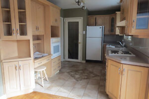 Kitchen Cupboards - Must Sell