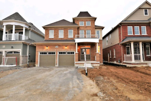 stunning brand new 4 bedroom home (avail now)