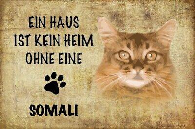 Somali-katze (Haus ohne Somali Katze Cat Blechschild Schild gewölbt Metal Tin Sign 20 x 30 cm)