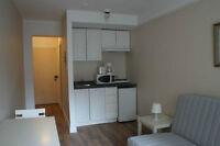 1 1/2 meublé et tout inclus - Plateau - Metro Sherbrooke