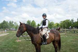 Affordable Riding Lessons