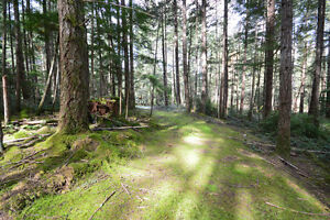 5 Acres - Fully Treed Lot