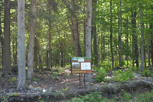 5 Acre Lots for Sale in Beautiful Brome Lake area of Townships West Island Greater Montréal image 7