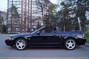 1999 Ford Mustang GT 35th anniversary Convertible