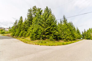 Lot 87 Forest Drive, Blind Bay - Beautiful Corner Lot