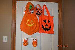 6 Adorable Quality Halloween costumes for children-Delivery!!! Cornwall Ontario image 4