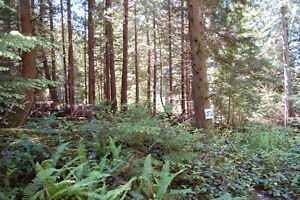 Surrounded by Parkland, Quiet Trails and Stunning Viewpoints North Shore Greater Vancouver Area image 1
