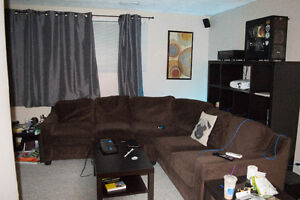 Basement Room in Bowness