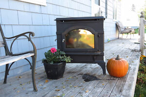 cast iron woodstove