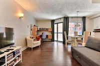 3 1/2 very nice, fully renovated, fully furnished and equipped,