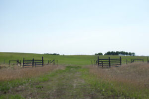 62.1 Acres For Sale in RM of Paynton SK