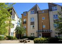 1 bedroom flat in Norton Farm Road, Henbury, Bristol, BS10 7DE