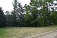 Pleasant, treed acreage in Fauqier.
