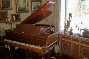 c1910 CHICKERING PARLOR GRAND PIANO - SHOWROOM CONDITION
